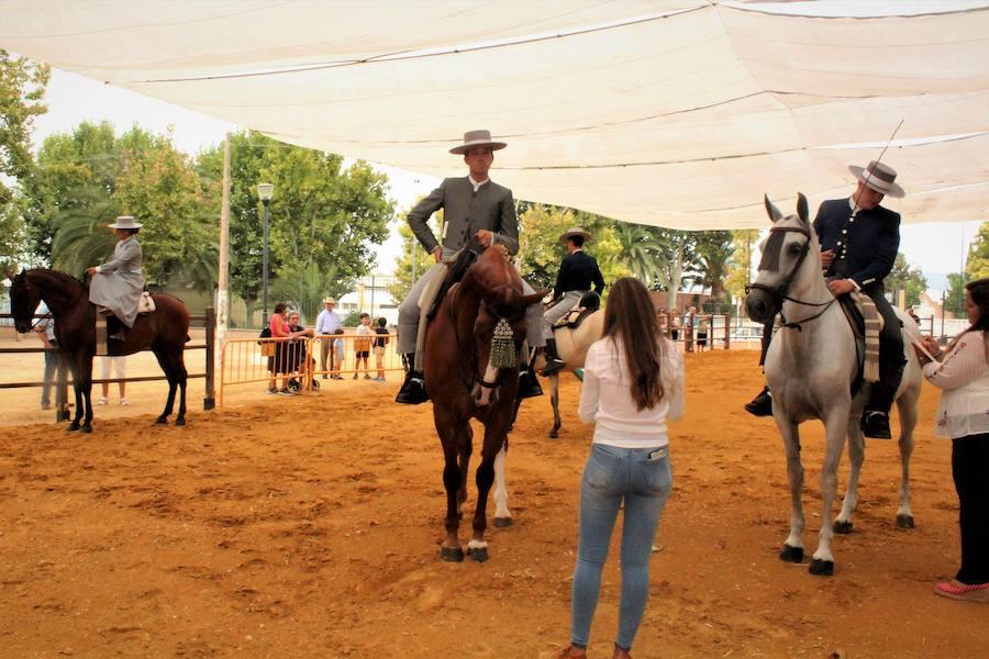 El caballo 63d14b510e6
