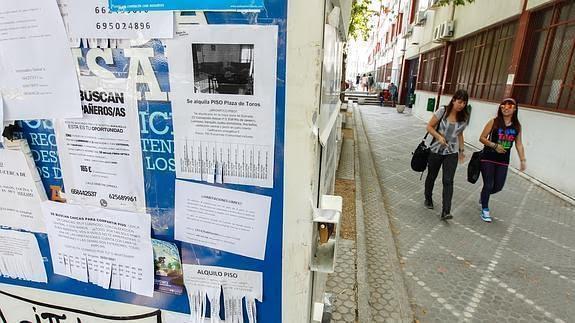 Desciende El Coste Medio Del Alquiler En Granada Capital Y Se