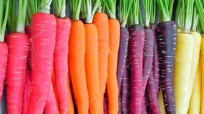 Sabias Que Las Zanahorias No Eran Naranjas Ideal 17 zanahoria icons zanahoria 17. las zanahorias no eran naranjas