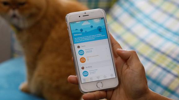 Las 10 app que debes tener en tu móvil si vives en Almería | Ideal